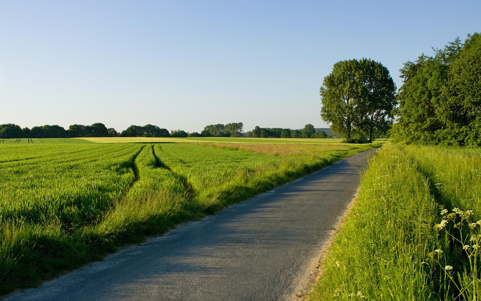for Dutch real estate websites