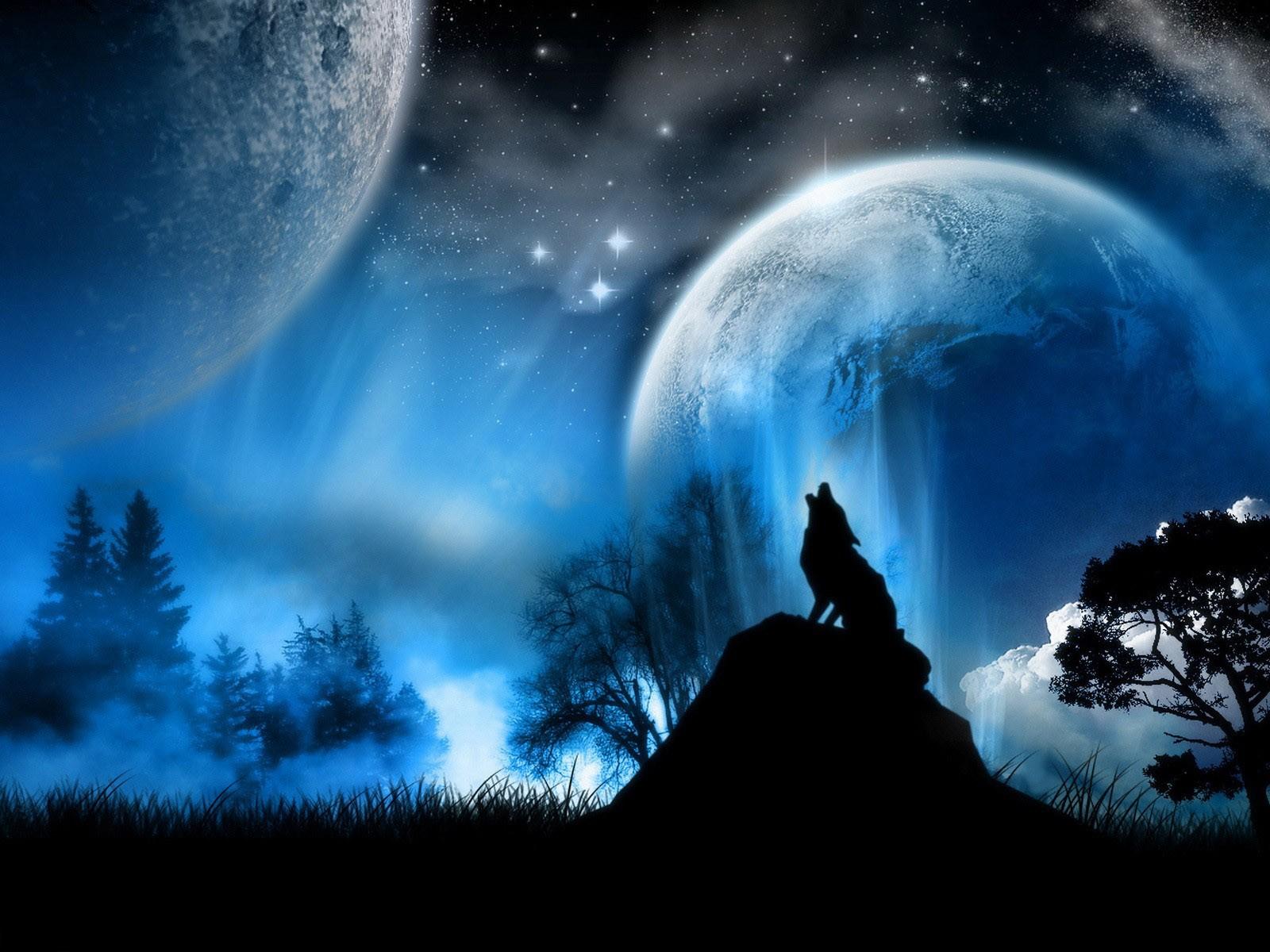 Обои рабочего стола графика волк волк