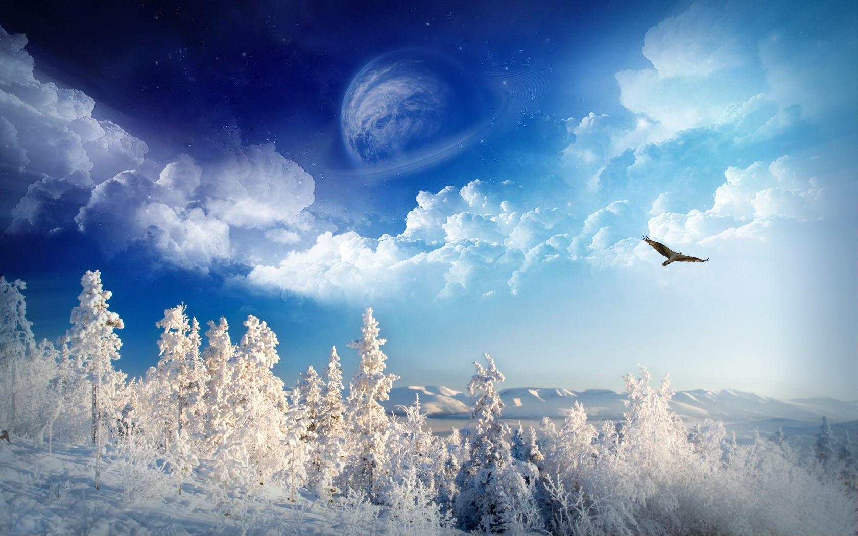 Зима графика галерея оформление