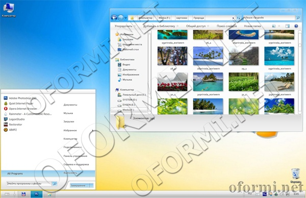 Leo Revenge Aero Windows 7 theme